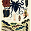 Thumbnail: William Saville-Kent | Great Barrier Reef Collection | A3 Art Print