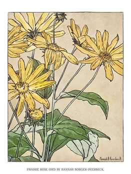 Sunflowers (1915) by Hannah Borger Overbeck.jpg