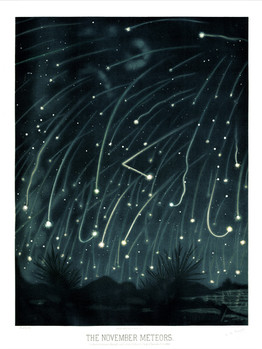 The Trouvelot Astronomical Drawings (1868) The November Meteors A3 Art Print The Dilettant