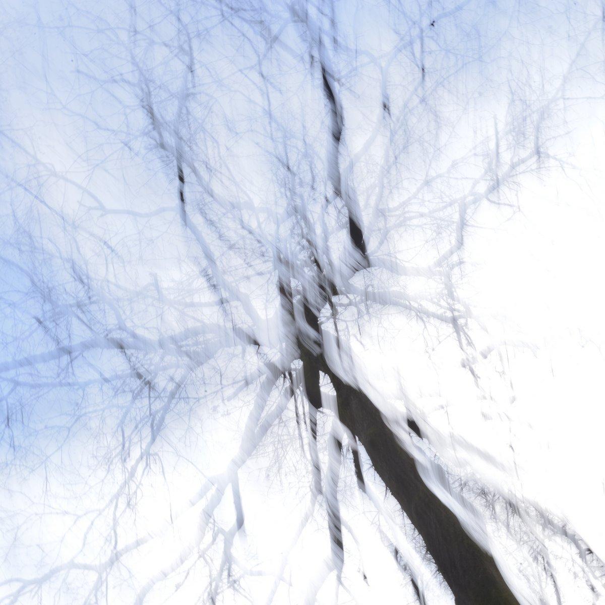 KAB-arbre