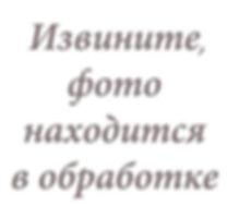large_Извините_фото_находится_в_обработк