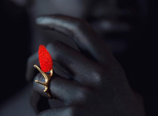 things of edible beauty_jewels2.jpg