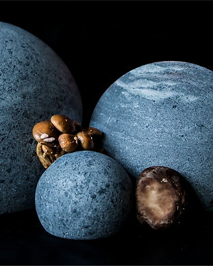 raw_finnish_stone_balls_and_mushrooms___