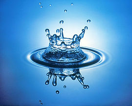 kangen vann