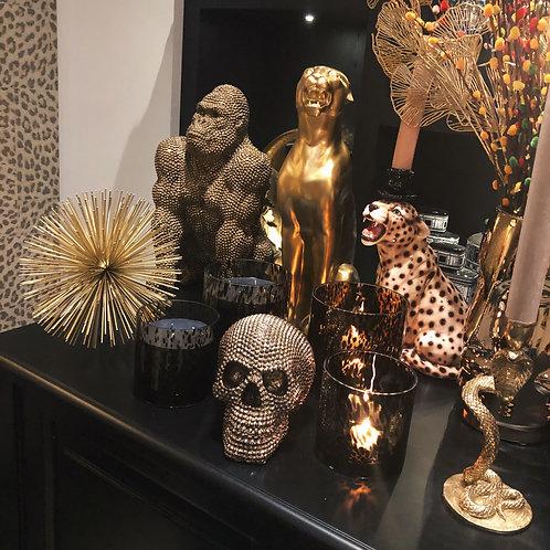 Gold cheetah