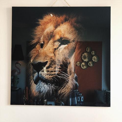Wall decoration Lion