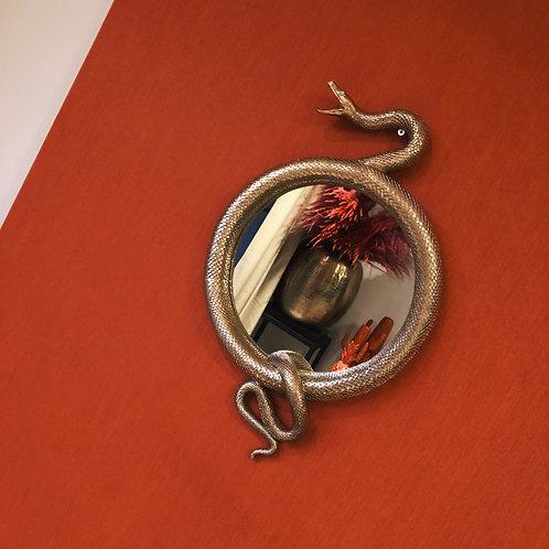 Snake mirror