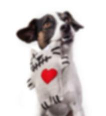 Spielzeug und Accessoires für Hunde von Duftmarke