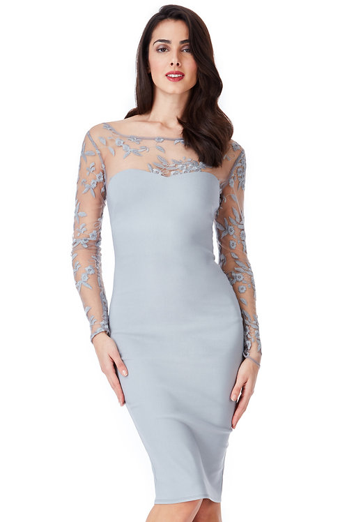 Midi Dress with Long Net Sleeves