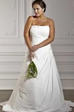 Michelle Bridal Strapless Wedding Dress