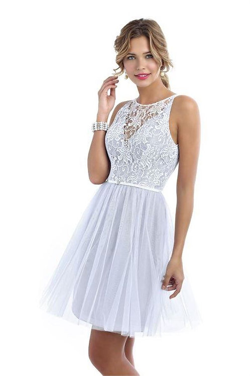 Short Tulle and Lace Dress