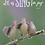 Thumbnail: Sing for Joy!