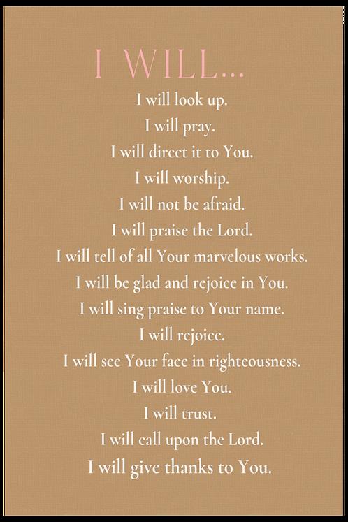 I Will -Ochre