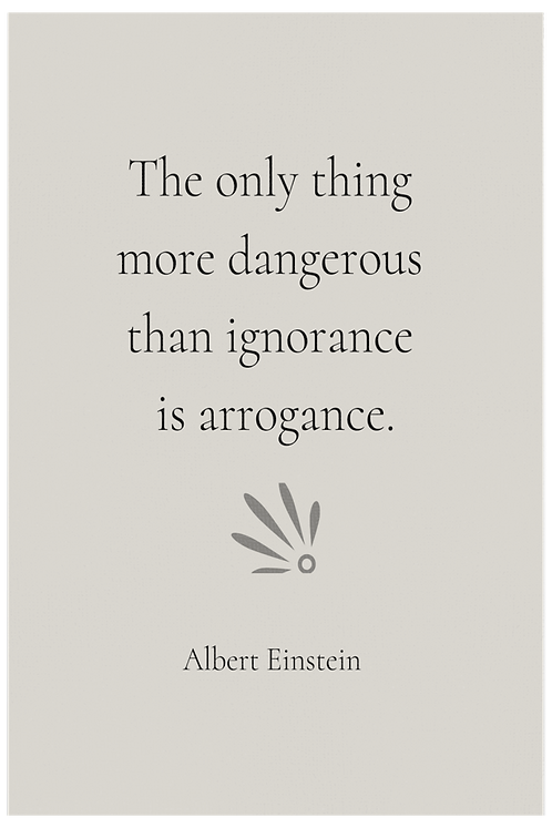 The Only Thing More Dangerous by Einstein