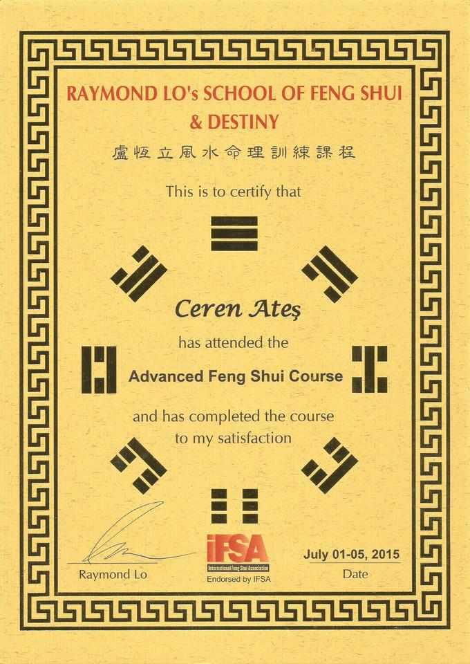 ADVANCE FENG SHUI