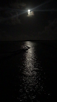 Moonlight Over Selinas