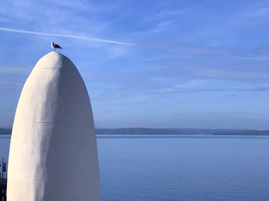 Crow's Nest (but a Seagull)