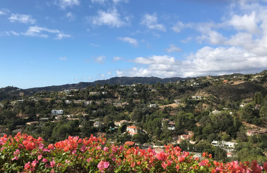 The View from The Getty Museum