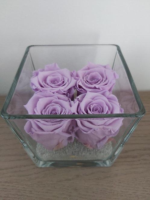Royal Cube lll, 4 long life rozen in glaswerk