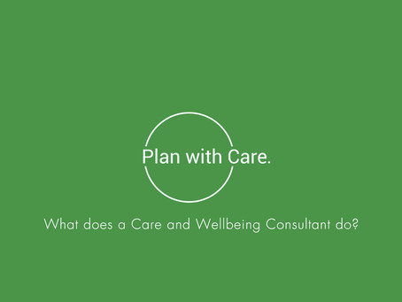 What does a Care and Wellbeing Consultant do?