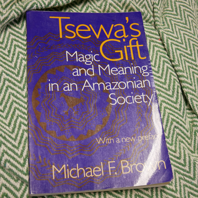 Tsewa's Gift: Magic and Meaning in an Amazonian Society, by Michael F. Brown