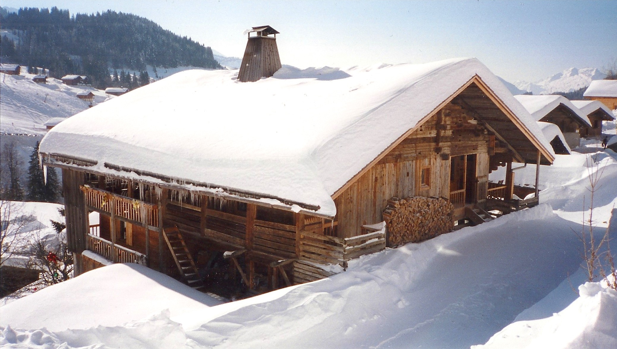 palatin hiver