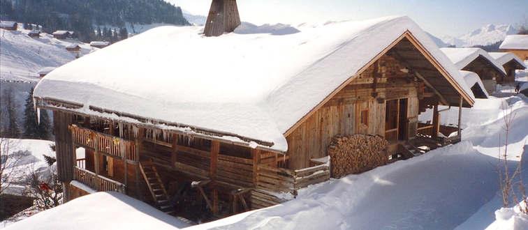 palatin hiver.jpeg