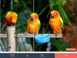 Top 3 online kostenlose Tools zur Bildkomprimierung