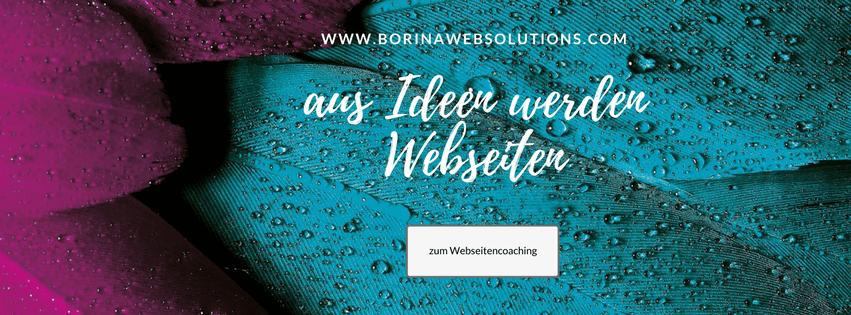 Webseiten coaching Borina
