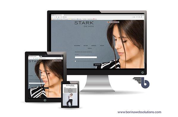 Webseite Steuerkanzlei Bur