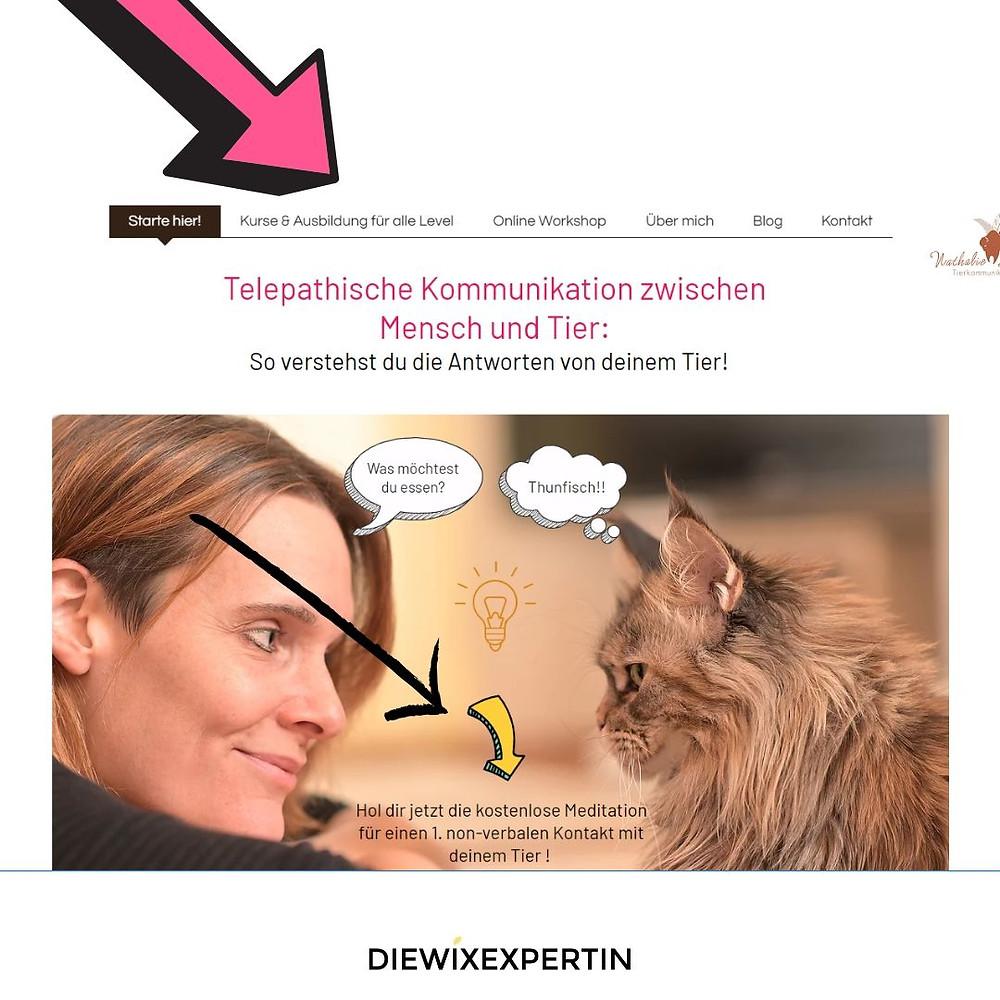 wix webseite beispiel tierkommunikation