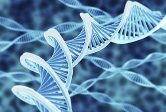 DNA - The Gene Code