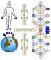Planetary Bio-Energetic Interface System, PBIS & Kathara Grids (tree of life)