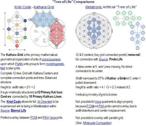 Tree of Life Comparisons