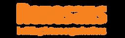 renesans-logo-header.png