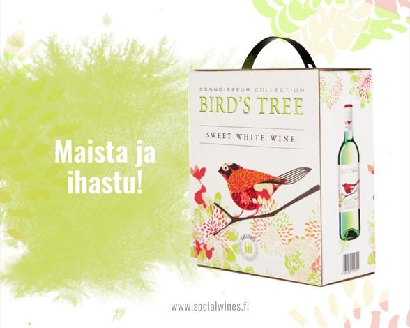 Bird's Tree mainos