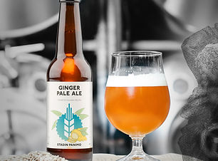 gingerpale-testi.jpg