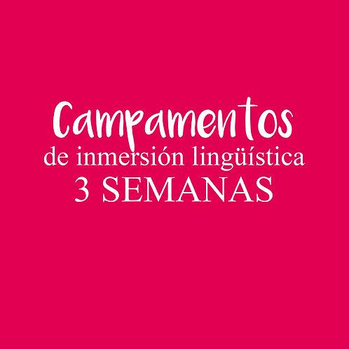 CAMPAMENTO de inmersión lingüística 3 SEMANAS