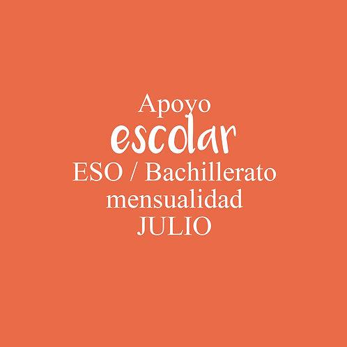 APOYO Escolar ESO / Bachillerato Julio