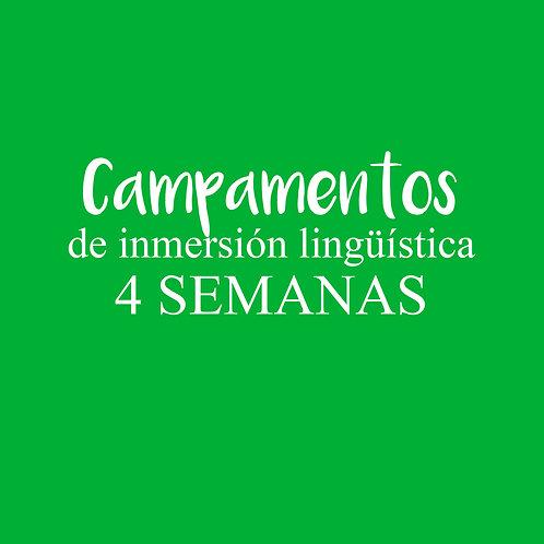CAMPAMENTO de inmersión lingüística 4 SEMANAS