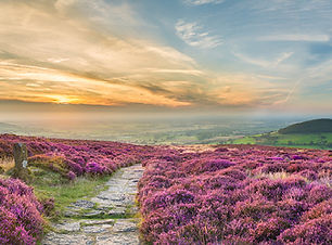 Yorkshire_Moors__©_Visit_Britain_VB3415