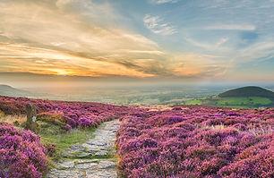 Yorkshire_Moors__©_Visit_Britain_VB3415