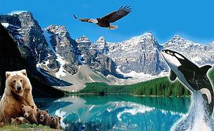 Canadian Rockies Home page image.jpg