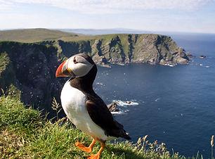 Scottish Islands & Highlands Sub Page la
