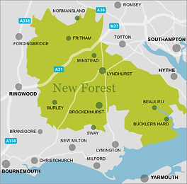 new-forest-map.png