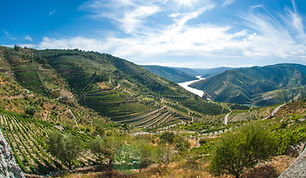 Douro Valley image.jpg