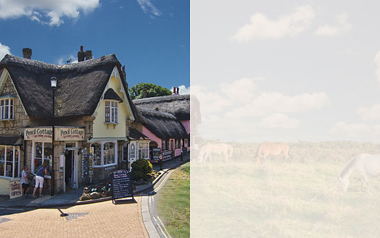 New Forest & IOW Hotels template.jpg