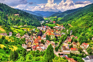 Black Forest small shutterstock_50035791