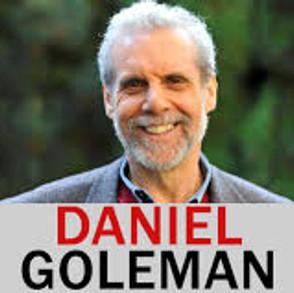 "Professor Daniel Goleman ""Emotional Intelligence"""