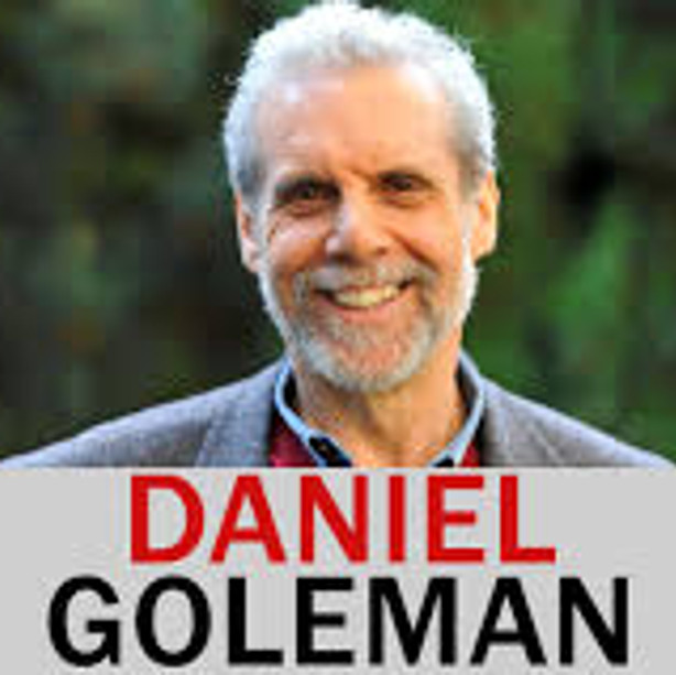 "Professor Daniel Goleman ""Emotional Intelligence"""